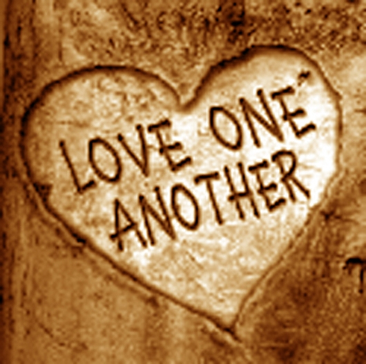 So now I am GIVING you a new commandment: Love each other. Just as ...